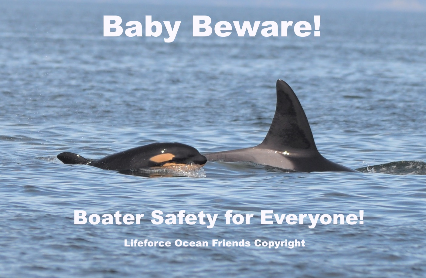 Boating Season Opens: Protect Babies And Boaters