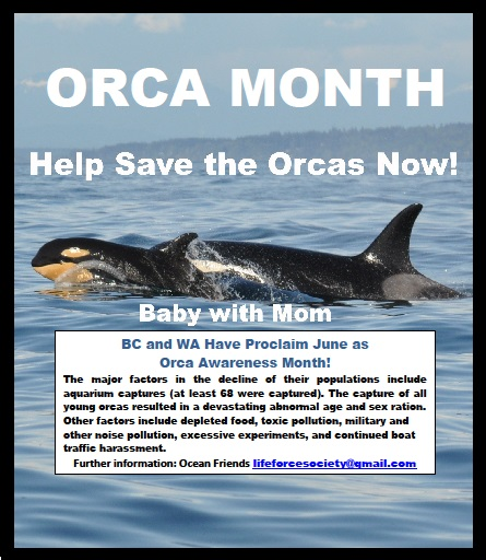 June 2018: Orca Awareness Month