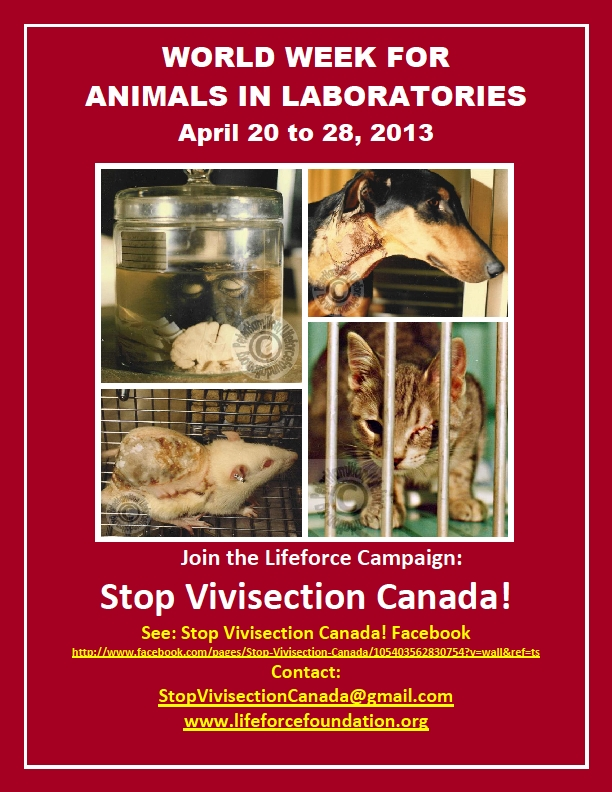 World Week For Animals In Laboratories 2013